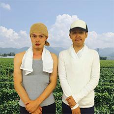 津南ガジャンボ菜農園